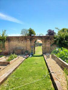 Garden Camera 2